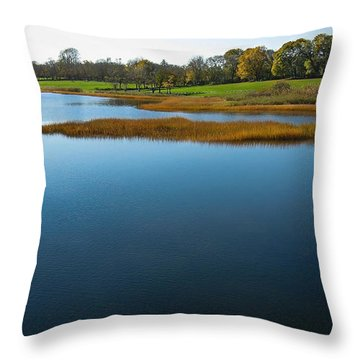 Throw Pillow featuring the photograph Water's Memories by Glenn DiPaola