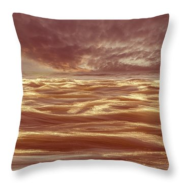 Waterscape Number Seven Throw Pillow by Bob Orsillo