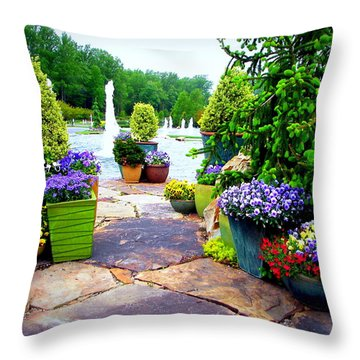 Waterway Path Throw Pillow by Pamela Hyde Wilson