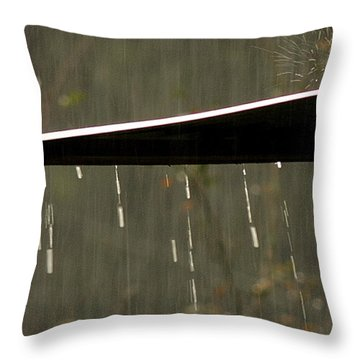 Throw Pillow featuring the photograph Waterworks by Charlotte Schafer