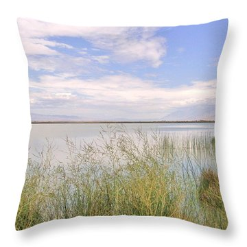 Throw Pillow featuring the photograph Waterworks by Marilyn Diaz