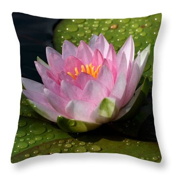 Watery Lily Throw Pillow