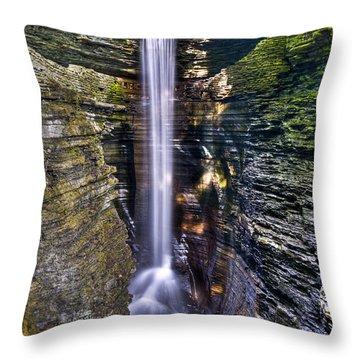 Watkins Glen Cascade Throw Pillow