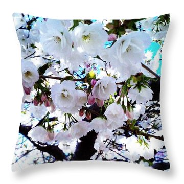 Throw Pillow featuring the photograph Blanche by Vanessa Palomino