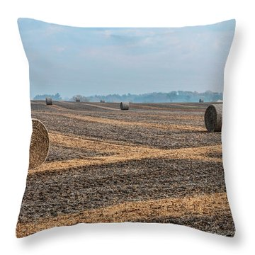 Throw Pillow featuring the photograph Waupaca Straw Rolls by Trey Foerster