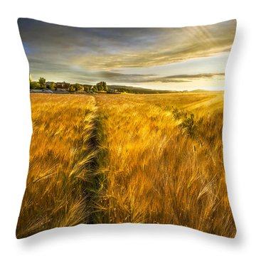 Throw Pillow featuring the photograph Waves Of Grain by Debra and Dave Vanderlaan