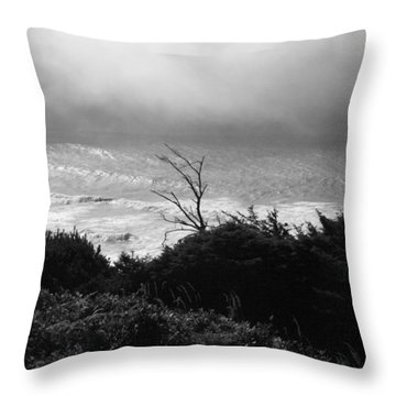 Waves Upon The Land Throw Pillow