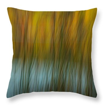 Wavy Throw Pillow by Randy Pollard