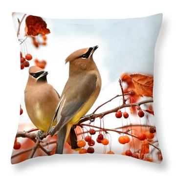 Beautiful Waxwing  Throw Pillow by Nava Thompson