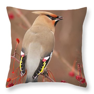 Waxwing In Winter Throw Pillow
