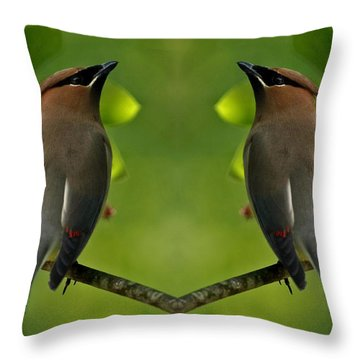 Waxwing Love Throw Pillow by Inspired Nature Photography Fine Art Photography
