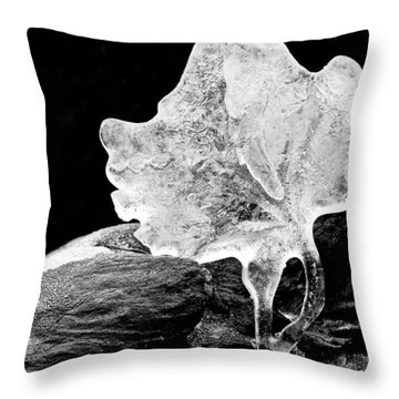 Way Too Cool Throw Pillow