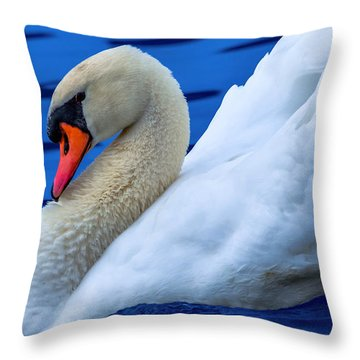 Throw Pillow featuring the photograph Wayward Swan by Brian Stevens