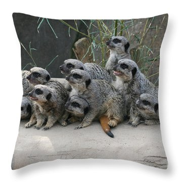 We Are Family Throw Pillow by Judy Whitton