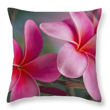 Throw Pillow featuring the photograph We Were Together . . .  by Sharon Mau