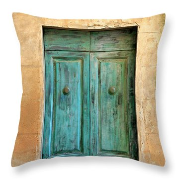 Weathed Museo Door Throw Pillow