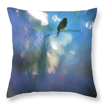 Weather To Fly  Throw Pillow