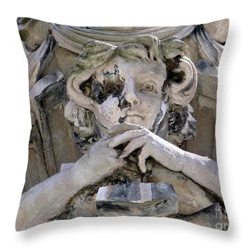 Weathered And Wise Throw Pillow by Ed Weidman