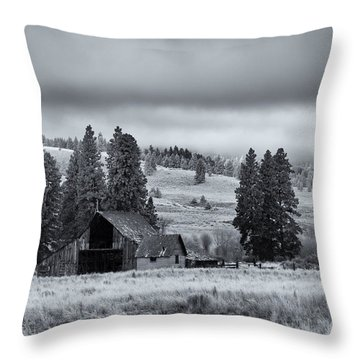 Weathered Beneath The Storm Throw Pillow by Mike  Dawson
