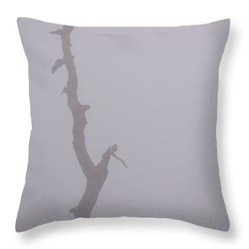Throw Pillow featuring the photograph Weathered by Carlee Ojeda
