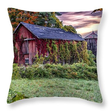 Weathered Connecticut Barn Throw Pillow