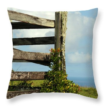 Weathered Fence Throw Pillow by Vivian Christopher