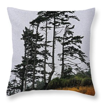 Weathered Fir Tree Above The Ocean Throw Pillow by Tom Janca