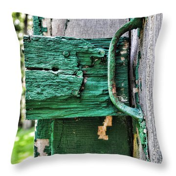 Weathered Green Paint Throw Pillow by Paul Ward