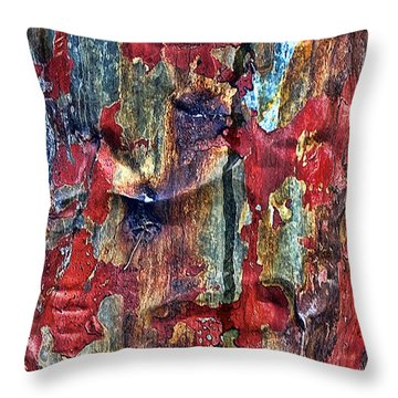 Weathered Throw Pillow by Marcia Colelli