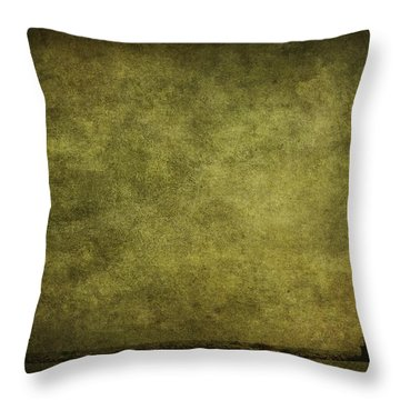 Weathering Storms Throw Pillow by Andrew Paranavitana