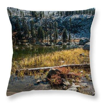Weaver Lake- 1-7692 Throw Pillow