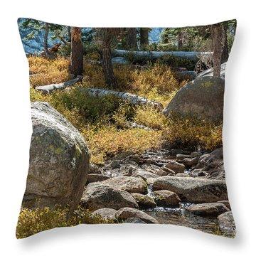 Weaver Lake 1-7699 Throw Pillow