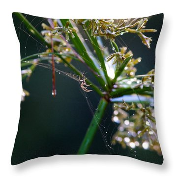 Web After The Rain Throw Pillow by Adria Trail