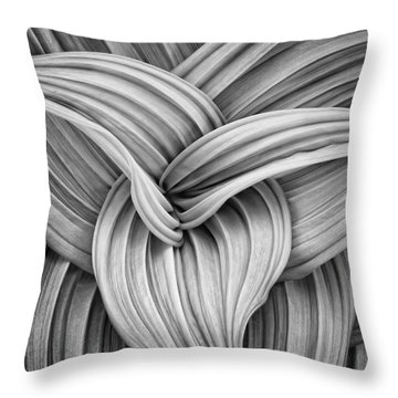 Web And Flow Throw Pillow