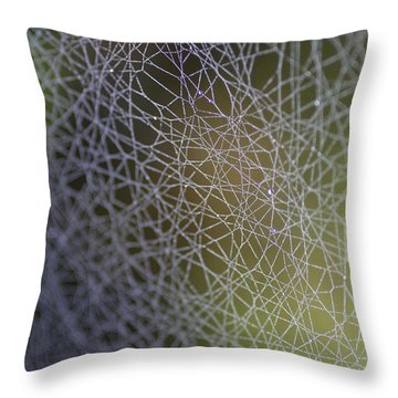 Web Connections Throw Pillow