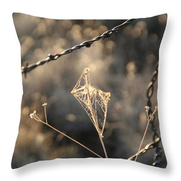 Throw Pillow featuring the photograph web by David S Reynolds