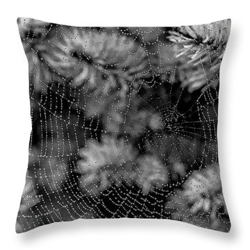 Web Drops Throw Pillow