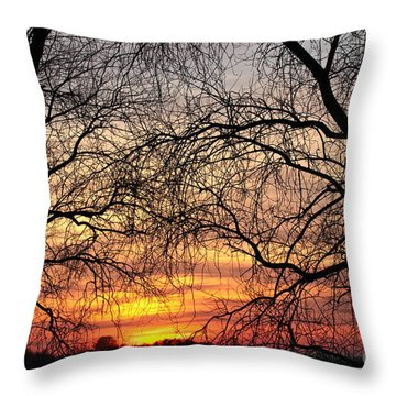 Web Of Branches Throw Pillow by David Warrington