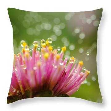 Webs And Water Whimsy Throw Pillow