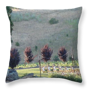 Throw Pillow featuring the photograph Wedding Grounds by Shawn Marlow