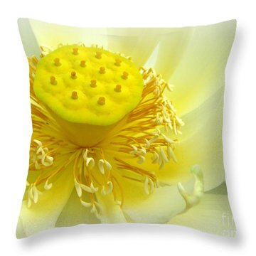 Tranquil Beginnings Throw Pillow