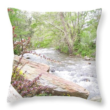 Wedding Reception Location By Angelia Clay Throw Pillow