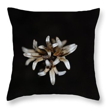 Throw Pillow featuring the photograph Weed On Black by Mim White