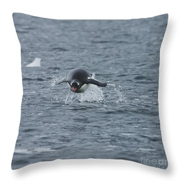 Weee... Here I Come.. Throw Pillow by Nina Stavlund