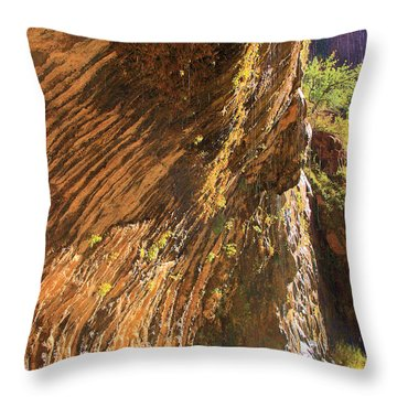Weeping Rock In Zion Throw Pillow