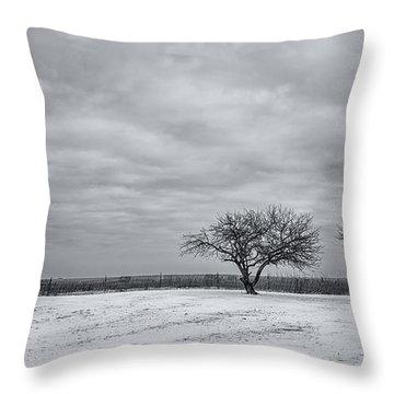 Weeping Souls Of Winter Desires Throw Pillow