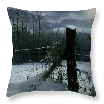 Weeping Winter Moon Throw Pillow by RC deWinter