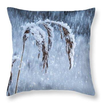Weight Of Winter Throw Pillow by Janne Mankinen