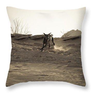 Weimaraner II - Lake Powell Throw Pillow by Julie Niemela