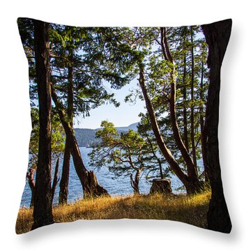 Welbury Throw Pillow